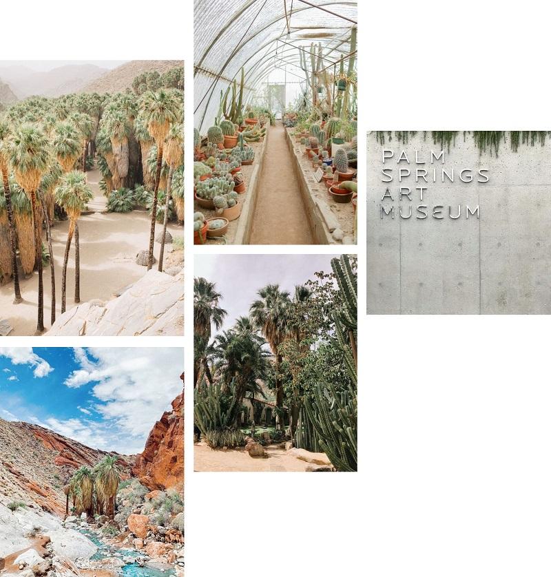 Travel - Palm Springs